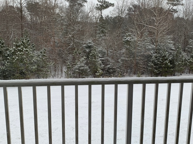 Only a few inches of snow on the ground in Delmar, Maryland.