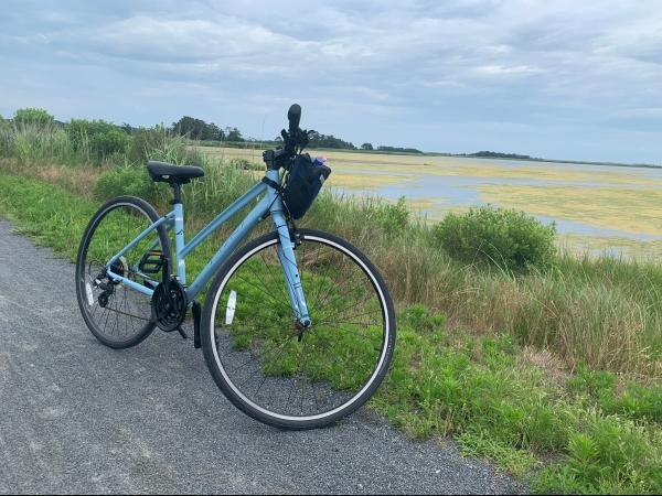 Biking through Cape Henlopen