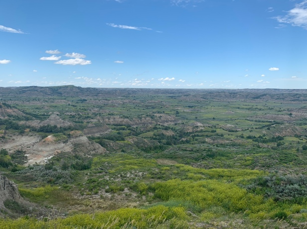 View from the top of the Painted Canyon Nature Trail.